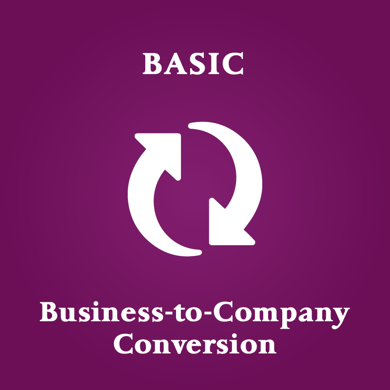 convert business to company singapore basic