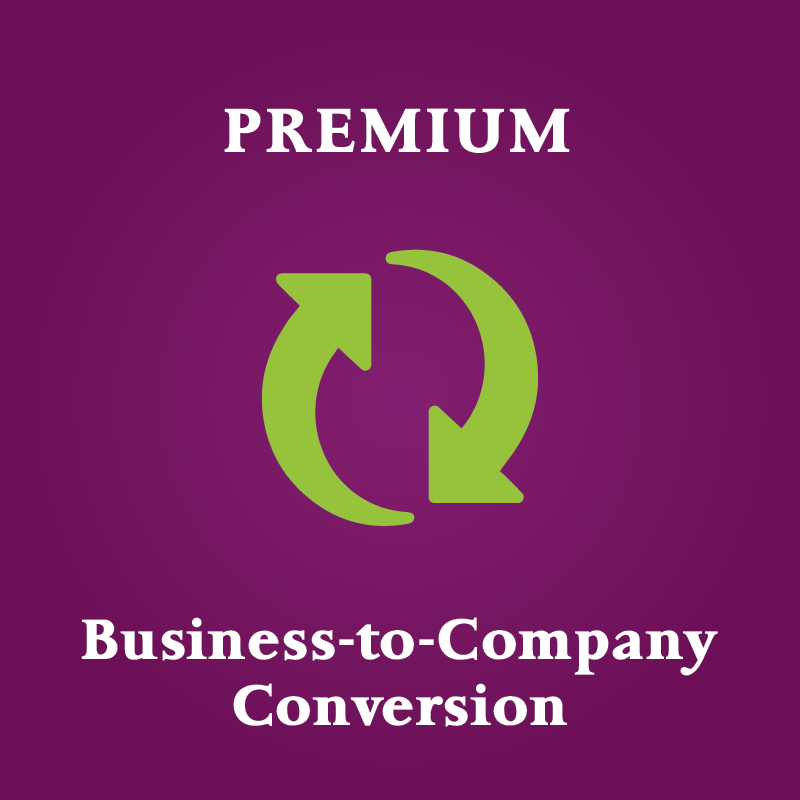 convert business to company singapore premium