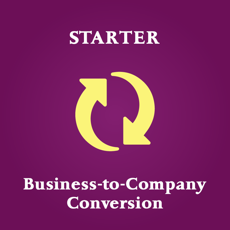 convert business to company singapore starter