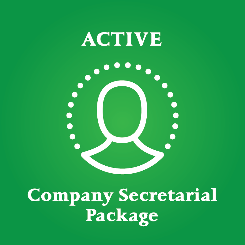 company secretarial and tax package active